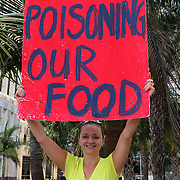 """Activists take part in a rally on the steps of city hall in downtown Orlando, Florida on Saturday, May 5, 2013. The protesters gathered to support a global protest named  """"March Against Monsanto,"""" demanding a stop to the use of agrochemicals and the production of genetically modified food, which according to them has harmful health effects, causing cancer, infertility and other diseases. Marches and rallies against seed giant Monsanto were held across the U.S. and in dozens of other countries. (AP Photo/Alex Menendez)"""
