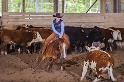 May 20, 2017 - Minshall Farm Cutting 3, held at Minshall Farms, Hillsburgh Ontario. The event was put on by the Ontario Cutting Horse Association. Riding in the 35,000 Non-Pro Class is Laurie Reed on Big Time Moves owned by the rider.