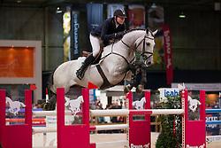 de Boer Lennard, (NED), Durango VDL<br /> VHO Trofee springen<br /> KWPN Hengstenkeuring - 's Hertogenbosch 2016<br /> © Hippo Foto - Dirk Caremans<br /> 04/02/16