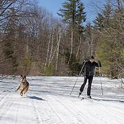 Spring skiing at Bear Notch XC Center
