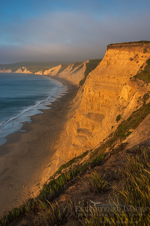 Sunrise light on the coastal cliffs above Drakes Beach, Drakes Bay, Point Reyes National Seashore, California