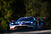 October 11-13, 2018: IMSA Weathertech Series, Petit Le Mans: 67 Ford Chip Ganassi Racing, Ford GT, Ryan Briscoe, Richard Westbrook, Scott Dixon