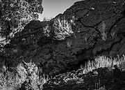 Lava rock formation and sagebrush composition from the Oregon Badlands Wilderness near Bend