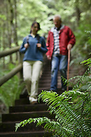 Middle-aged woman and senior man on trail in forest focus on fern in foreground