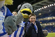 Young Brighton fan and mascot before with  the Sky Bet Championship match between Brighton and Hove Albion and Leeds United at the American Express Community Stadium, Brighton and Hove, England on 29 February 2016. Photo by Phil Duncan.
