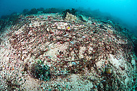 Reef Damaged by discarded fishing nets<br /> <br /> shot in Indonesia