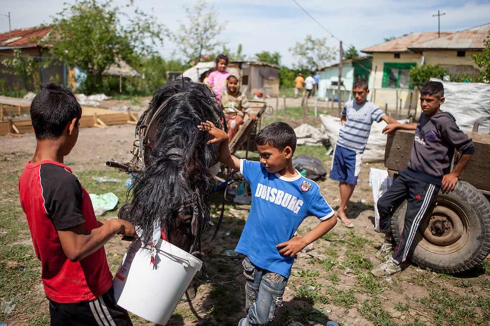 Young boys giving water to a horse in the Roma area of Frumusani.