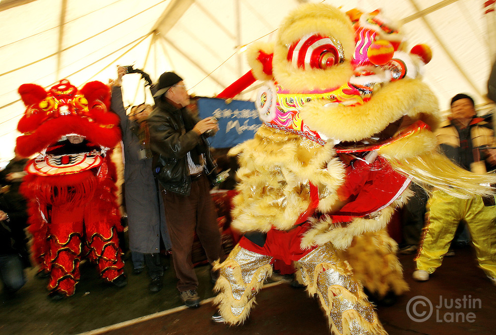 Dancers perform a traditional Chinese lion dance during a Chinese New Year event in the Chinatown neighborhood of New york, New York on Friday 16 February 2007. Chinese New Year officially begins on Sunday 18 February and this will the year of the pig.