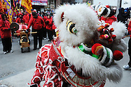 February 13, 2011 - Members of the Gund Kwok Asian Women Lion & Dragon Dance Troupe perform the traditional Lion Dance during New Year celebrations in Boston's China Town.