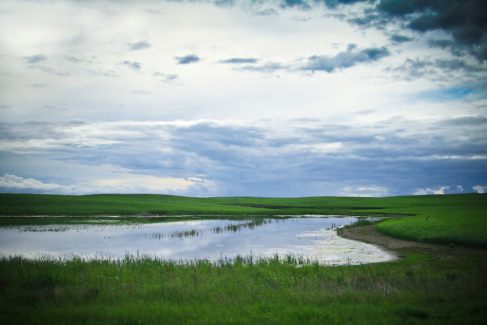 Gentle clouds float above prairie slough, Saskatchewan