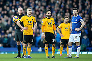 Referee Lee Mason and the players wait for stewards to deal with the cat pitch invader during the Premier League match between Everton and Wolverhampton Wanderers at Goodison Park, Liverpool, England on 2 February 2019.