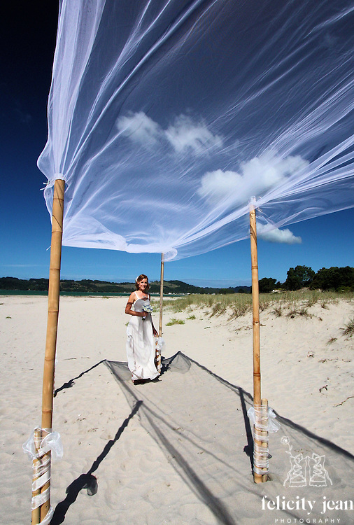 coromandel wedding photos nick & narelle's wedding at Cooks Beach & Villa Toscana Whitianga by fleaphotos cool ideas for your wedding 2016/2017 flowers venue's nibbles dresses sign boards dressing up your pets props for photos ceremony styling photo booths bands cakes and more