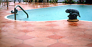 rain; in-ground swimming pool filled to top; ready to overflow; terra cotta deck pavers; home