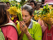 """12 JULY 2014 - PHRA PHUTTHABAT, SARABURI, THAILAND: People wait to present flowers to the monks before the Tak Bat Dok Mai at Wat Phra Phutthabat in Saraburi province of Thailand. Wat Phra Phutthabat is famous for the way it marks the beginning of Vassa, the three-month annual retreat observed by Theravada monks and nuns. The temple is highly revered in Thailand because it houses a footstep of the Buddha. On the first day of Vassa (or Buddhist Lent) people come to the temple to """"make merit"""" and present the monks there with dancing lady ginger flowers, which only bloom in the weeks leading up Vassa. They also present monks with candles and wash their feet. During Vassa, monks and nuns remain inside monasteries and temple grounds, devoting their time to intensive meditation and study. Laypeople support the monks by bringing food, candles and other offerings to temples. Laypeople also often observe Vassa by giving up something, such as smoking or eating meat. For this reason, westerners sometimes call Vassa """"Buddhist Lent.""""    PHOTO BY JACK KURTZ"""