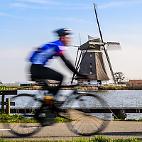 The Netherlands has some of the best cycling infrastructure in the world