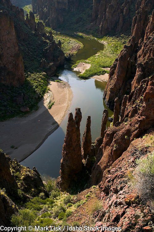 Ryolite hoodoos guard the conflulence of the east and south fork of the Owyhee River.