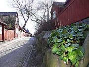 Lotsgatan mot Åsöberget på Södermalm i Stockholm