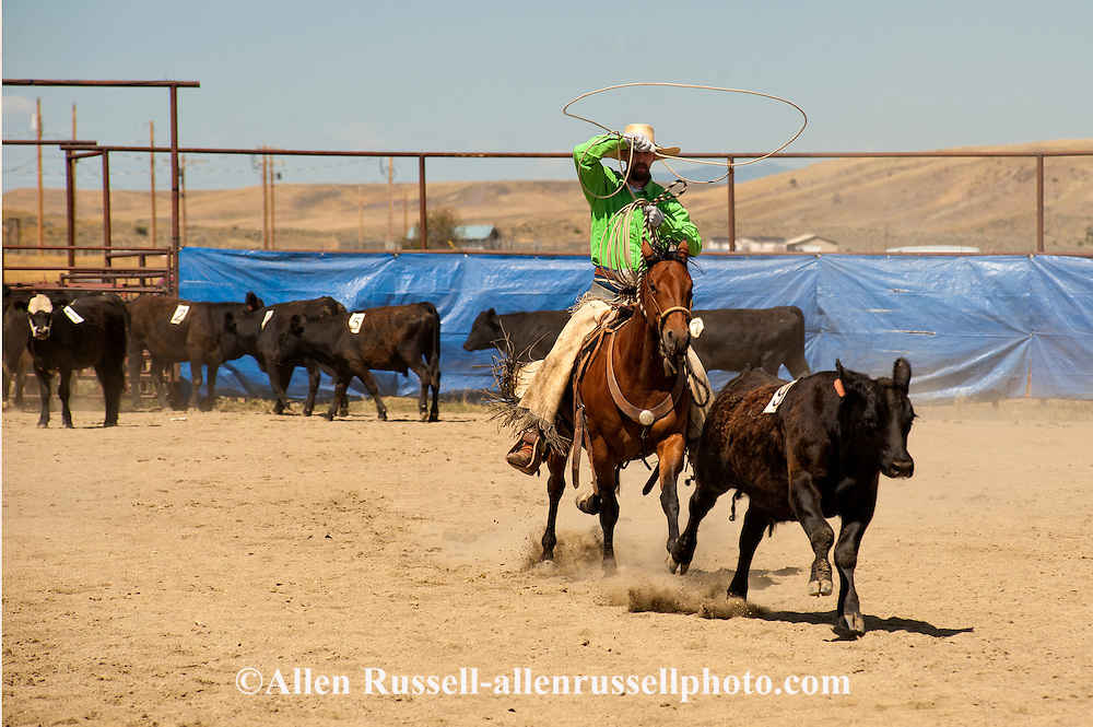 Wilsall Ranch Rodeo, Montana, Team Doctoring, Rockie Ridge Riders Team, Corby Ward