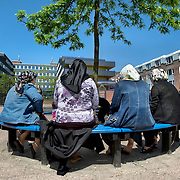 Nederland Rotterdam 24-05-2009 20090524 Foto: David Rozing .                                                                                    .Achterstandswijk Bloemhof, groepje moslima's zitten op pleintje op bankje onder boom Muslim woman chatting outside in neighbourhoud, muslims, straatbeeld, stadbeeld.Foto: David Rozing