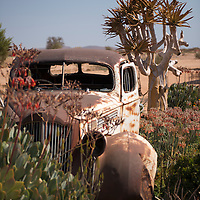 Old cars decorate the grounds of the Gondwana Canyon Roadhouse near Fish River Canyon in Namibia.