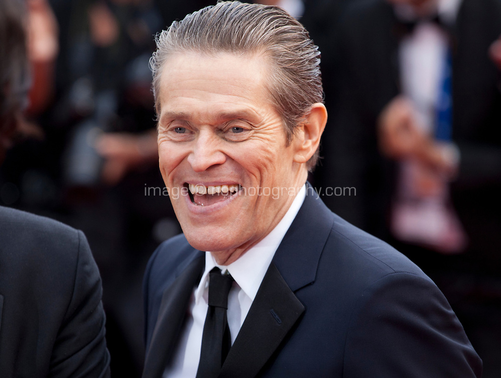 Actor Willem Dafoe at the La Belle Epoque gala screening at the 72nd Cannes Film Festival Monday 20th May 2019, Cannes, France. Photo credit: Doreen Kennedy