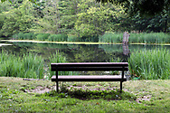 A park bench overlooking McLean Pond on a summer evening at Campbell Valley Regional Park in Langley, British Columbia, Canada