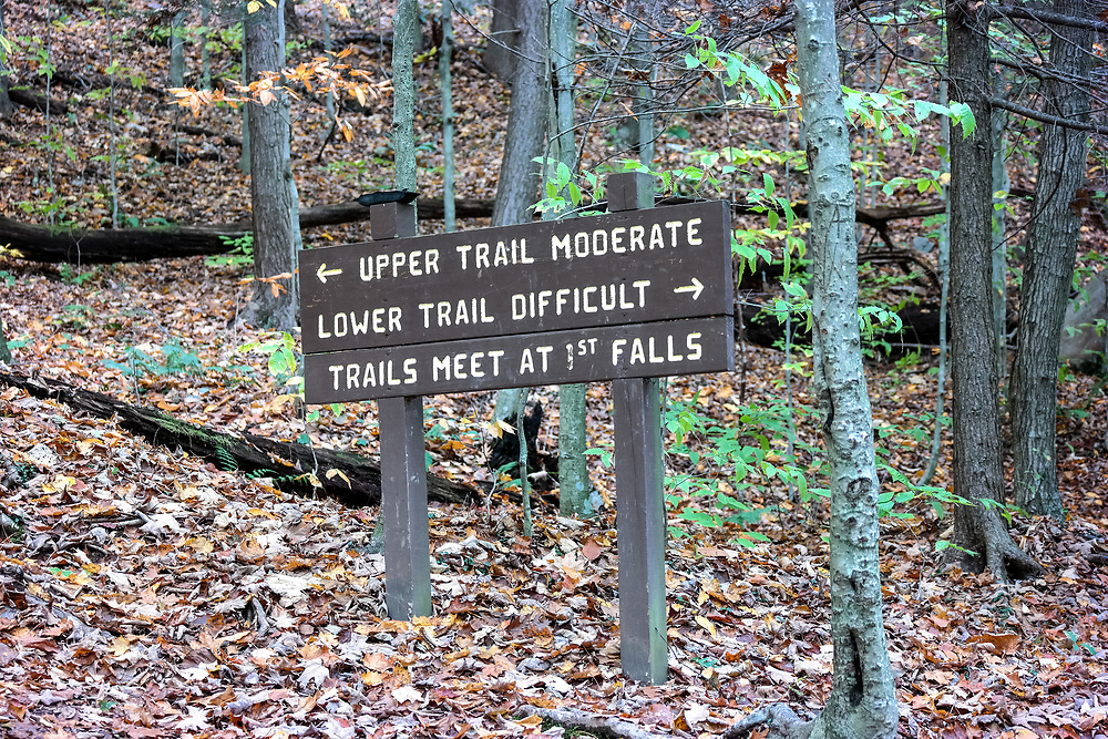 Directional sign along the Falls Trail in Ricketts Glen State Park, Benton, PA, USA