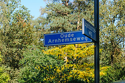 Groenendaal, Apeldoorn, Gelderland, Netherlands