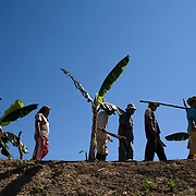Bolivia. Copacobana. the community return from the camellones (raised fields)after meeting on their regular Saturday to tend the crops and clear any weeds etc.