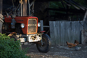 An old Polish-manufactured Ursus tractor parked in a farmyard in morning sunlight, on 22nd September 2019, in Jaworki, near Szczawnica, Malopolska, Poland. The Ursus Factory was founded in Poland in 1893 and began producing exhaust engines and then later trucks and metal fittings intended for the Russian Tsar. During the 1930s, the factory manufactured military tractors, tanks and other heavy machinery for troops. During World War II, PZInz was relocated to Germany by the Germans and the remains were destroyed but after the war production continued and URSUS Sp.z o.o. built models based on old Massey-Ferguson and common designs of Ursus and Zetor.