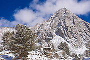 Mount Morgan after a winter storm, John Muir Wilderness, Sierra Nevada Mountains, California