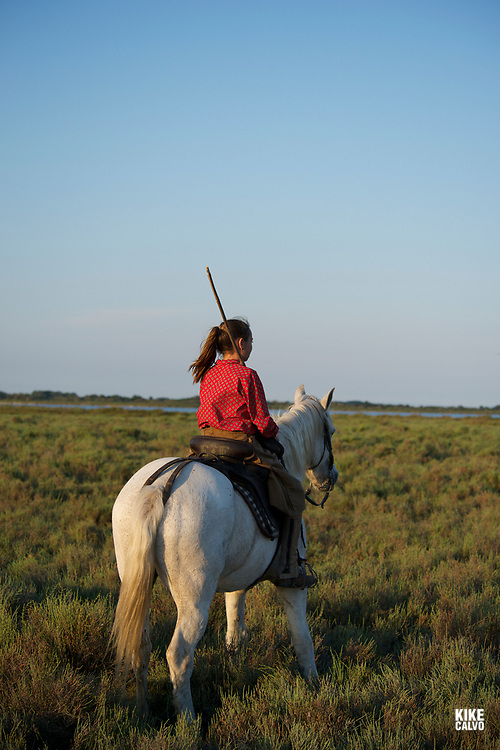 Mounted cattle herdsman known as Gardians in the Camargue delta in southern France.