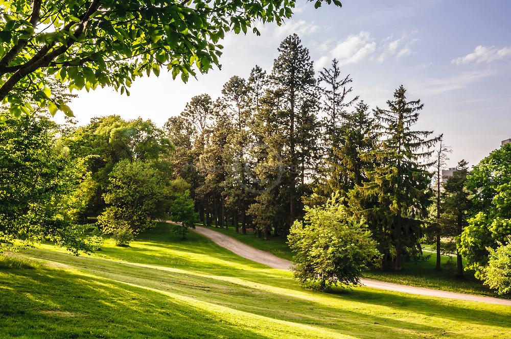 Dominion Arboretum park, Ottawa ON Canada