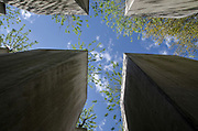 Berlin Holocaust memorial to Jews murdered during 2nd world war in Europe by the Nazis looking up at a canopy of trees