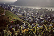 Rhine River, vineyards near Linz, Germany.