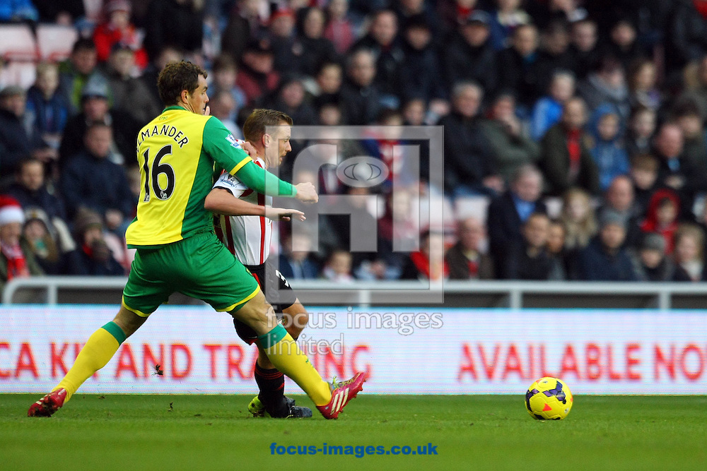 Picture by Paul Chesterton/Focus Images Ltd +44 7904 640267<br /> 21/12/2013<br /> Johan Elmander of Norwich and Sunderland's Lee Cattermole in action during the Barclays Premier League match at the Stadium Of Light, Sunderland.