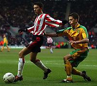 Photo. Javier Garcia<br />15/02/2003 Southampton v Norwich, FA Cup 5th Round, St. Mary's Stadium<br />Southampton sub Fabrice Fernandes holds off Adam Drury