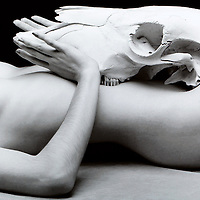 kelly nude w/ skull