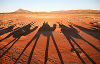 Aug 11, 2007 - Alice Springs, Northern Territory, Australia - The shadows of camels on the Pyndan Camel Tracks ride through the outback.<br />