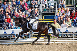 Fischer, Tanja (GER) Cyber E WE<br /> Warendorf - Bundeschampionate 2017<br /> © www.sportfotos-lafrentz.de/Stefan Lafrentz