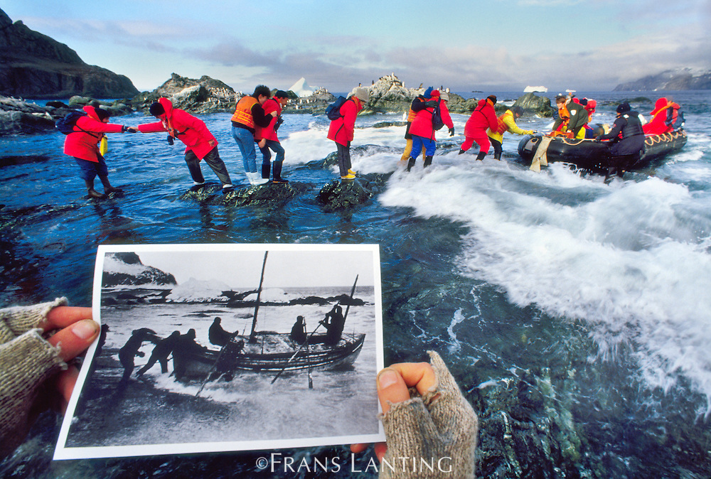 Tourists landing on Elephant Island where Sir Ernest Shackleton was marooned, Antarctica, historical photo by Frank Hurley