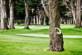 Harding Park San Francisco