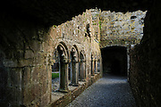 Meath County, Bective Abbey is a Cistercian abbey on the River Boyne founded by Murchad O'Maeil-Sheachlainn in 1147. Although nothing remains except old ruins and walls, it is in a remarkable state of preservation. Bective Abbey was used as a location of the movie Braveheart.