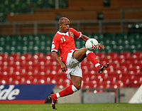 Photo: Rich Eaton.<br /> <br /> Wales v Cyprus. UEFA European Championships 2008 Qualifying. 11/10/2006. goalscorer for Wales Robert Earnshaw