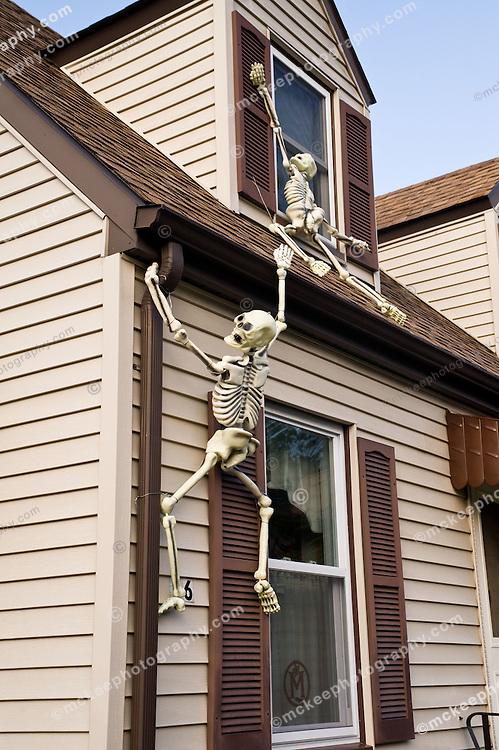 Skeleton Climbing