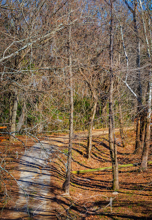 A winding trail leads visitors through the Civil Rights Memorial Park, Feb. 7, 2015, in Selma, Alabama. The park was established in 2001 and includes murals and plaques honoring those who led the Civil Rights movement in Selma in the 1960's. (Photo by Carmen K. Sisson/Cloudybright)