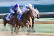 Qatar Cherokee Run Stakes (Race 2) (Dirt)<br /> November 3, 2018: Audible #3, ridden by Javier Castellano, wins the 1st running of the Qatar Cherokee Run Stakes on Breeders' Cup World Championship Saturday at Churchill Downs on November 3, 2018 in Louisville, Kentucky