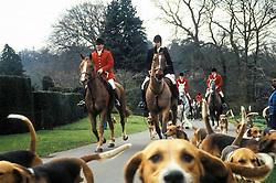 Belvoir Foxhounds, Belvoir Castle, Leicestershire, England, UK, 11/03/1992.