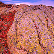 Autumn on Cadillac Mountain