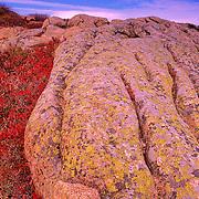 Autumn on Cadillac Mountain